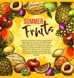 tropical fruit sketch poster of summer berry frame vector image