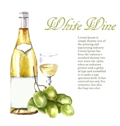Watercolor wine design elements vector image