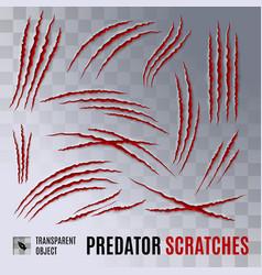Predator scratches vector
