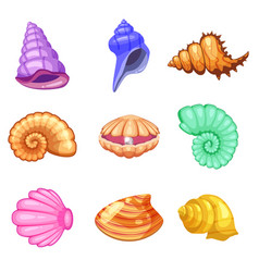 Colorful tropical shells underwater icon set frame vector