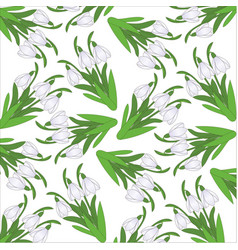 Pattern from snowdrops on a white background vector