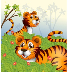 Tigers in the woods vector