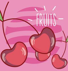 Cherries fruits cartoon vector