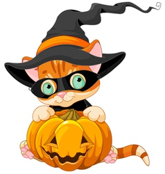 Cute Halloween Kitten vector image