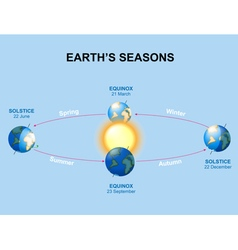 Earths seasons vector image
