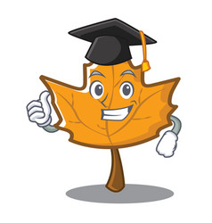 Graduation maple character cartoon style vector