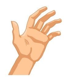 Man hand on white background vector image