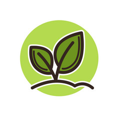 plant icon with leaves on stems that grow from vector image