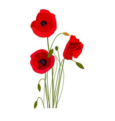 Poppies icon on a white background flower vector