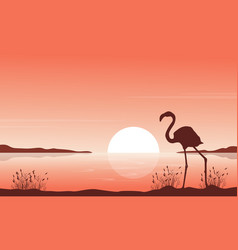 silhouette of flamingo on lake scenery vector image