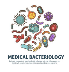 viruses bacteria and microbes poster for biology vector image