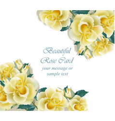 Yellow roses card delicate summer card vector