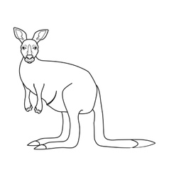 Kangaroo icon in outline style isolated on white vector image vector image