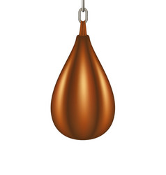 punching bag for boxing in brown design vector image vector image