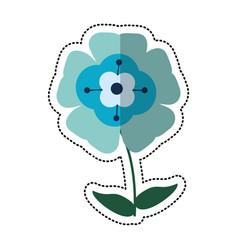 cartoon flower flourish natural vector image vector image