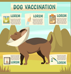 Dog vaccination orthogonal background poster vector