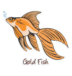 Goldfish color vector