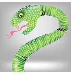 Green snake vector