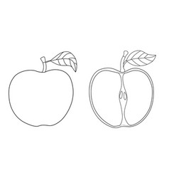 cartoon contour outline apple with leaf isolated vector image