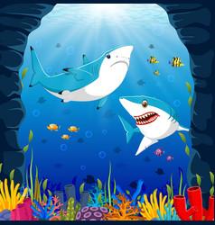 Cartoon shark under the sea vector