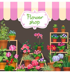 Flower shop dark vector