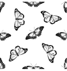 Seamless pattern with black and white red lacewing vector