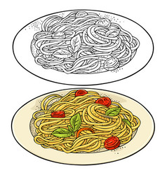 spaghetti on plate vintage color engraving vector image