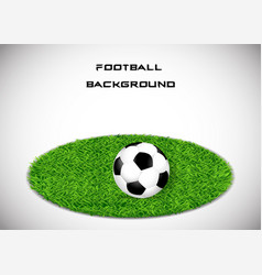 the ball on the grass soccer background vector image