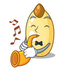 With trumpet cedar pine nuts on a cartoon vector