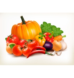 Fresh vegetables isolated on white background vector image vector image