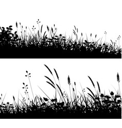 grassy foregrounds vector image