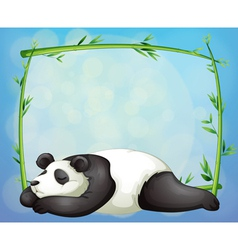 A sleeping panda and the empty frame made of vector