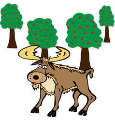 Adult moose with horns vector