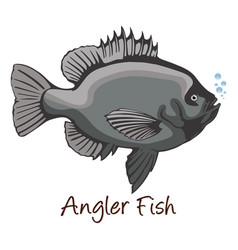 Anglerfish color vector