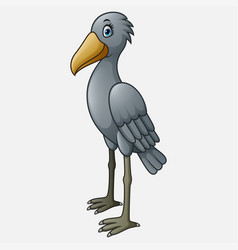 cartoon shoebill character vector image
