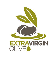 Extra virgin olive oil logo design of vector