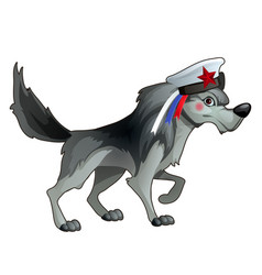 gray forest wolf in a sailor hat with a ribbon in vector image