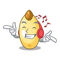Listening music cedar pine nuts on a cartoon vector