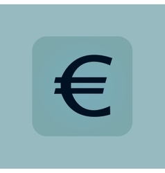 Pale blue euro icon vector image