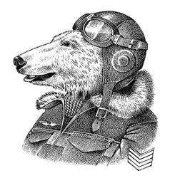 polar bear dressed up in pilot or airman flyboy vector image
