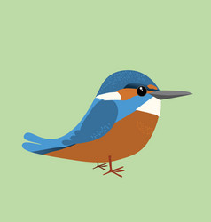 A common king fisher comic vector