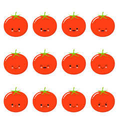 funny tomato - isolated cartoon emoticons cute vector image