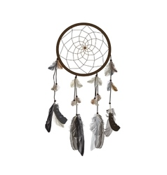 Naturalistic Dreamcatcher Isolated on White vector