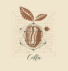 old coffee banner with coffee bean and lorem ipsum vector image