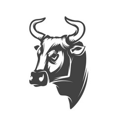 bull head isolated on white background vector image vector image