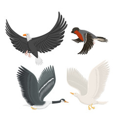 set of different flying birds vector image vector image