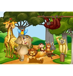 Wild animals living in the forest vector image vector image