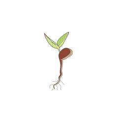 seed plant tree organic logo vector image vector image