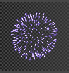 Firework lilac bursting isolated transparent vector