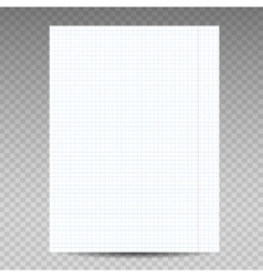 Realistic squared notebook paper vector image